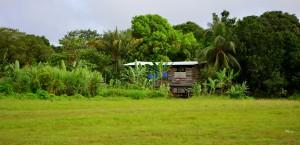Suriname huisje