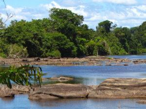 Pingpe rivier