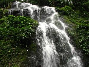 Brownsberg watervallen