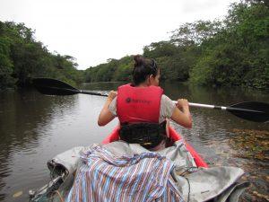 Kayak Paramaribo