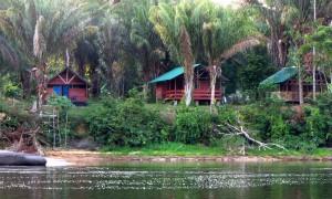 Pingpe resort