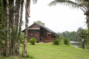 Palumeu - river lodges