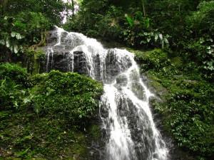 Brownsberg waterval