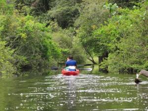 Coesewijne Kajak rivier