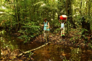 hiking jungle suriname