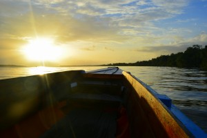 Dolfijnen trip - Waterproof Tours Suriname