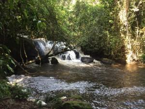 Ralleigvallen Suriname