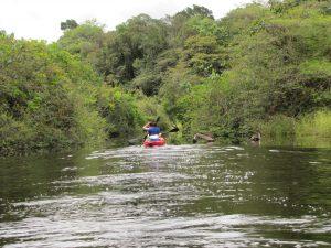 coropina kayak
