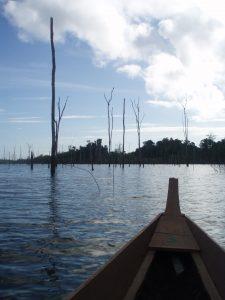 Ston Island